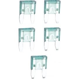 ASG Fuibile tubolare vetro 30A x 5pcs