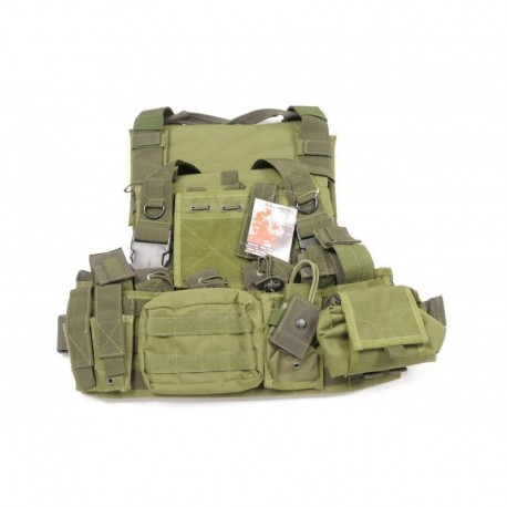 SWISS ARMS SOE (Wasatch full Pouch) OD Green
